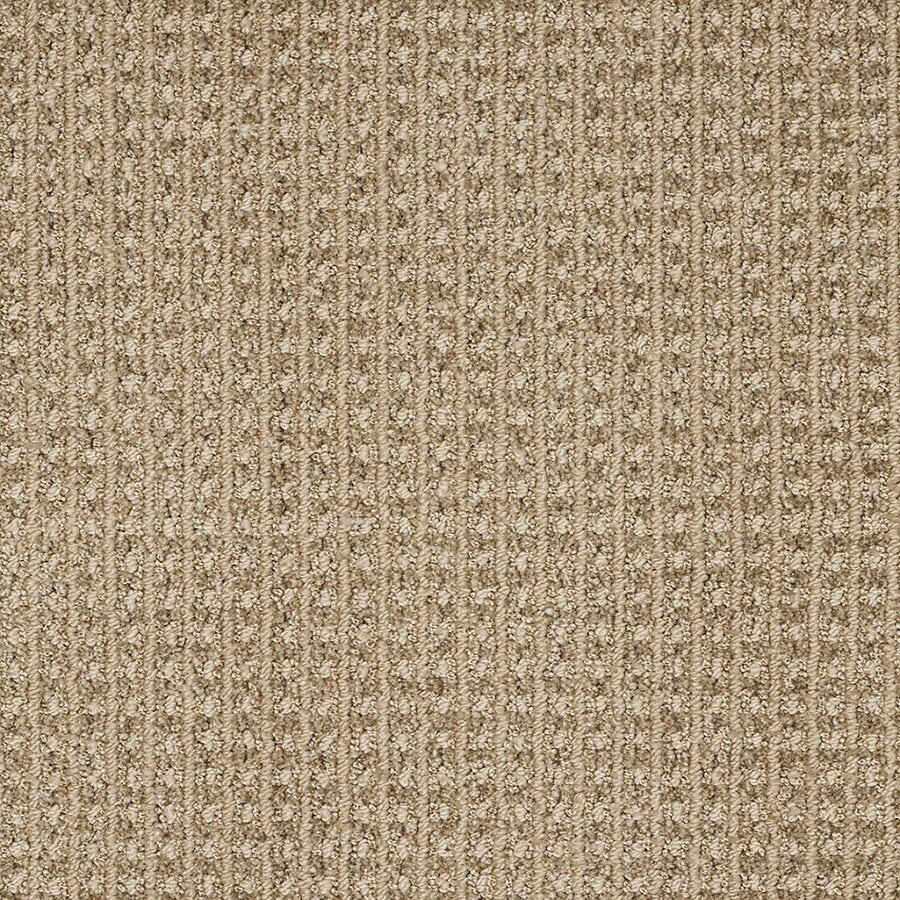 STAINMASTER Rising Star Trusoft Light Mocha Cut and Loop Carpet Sample