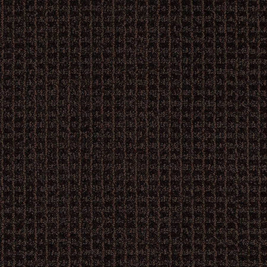 STAINMASTER Rising Star Trusoft Kohl Brown Cut and Loop Carpet Sample