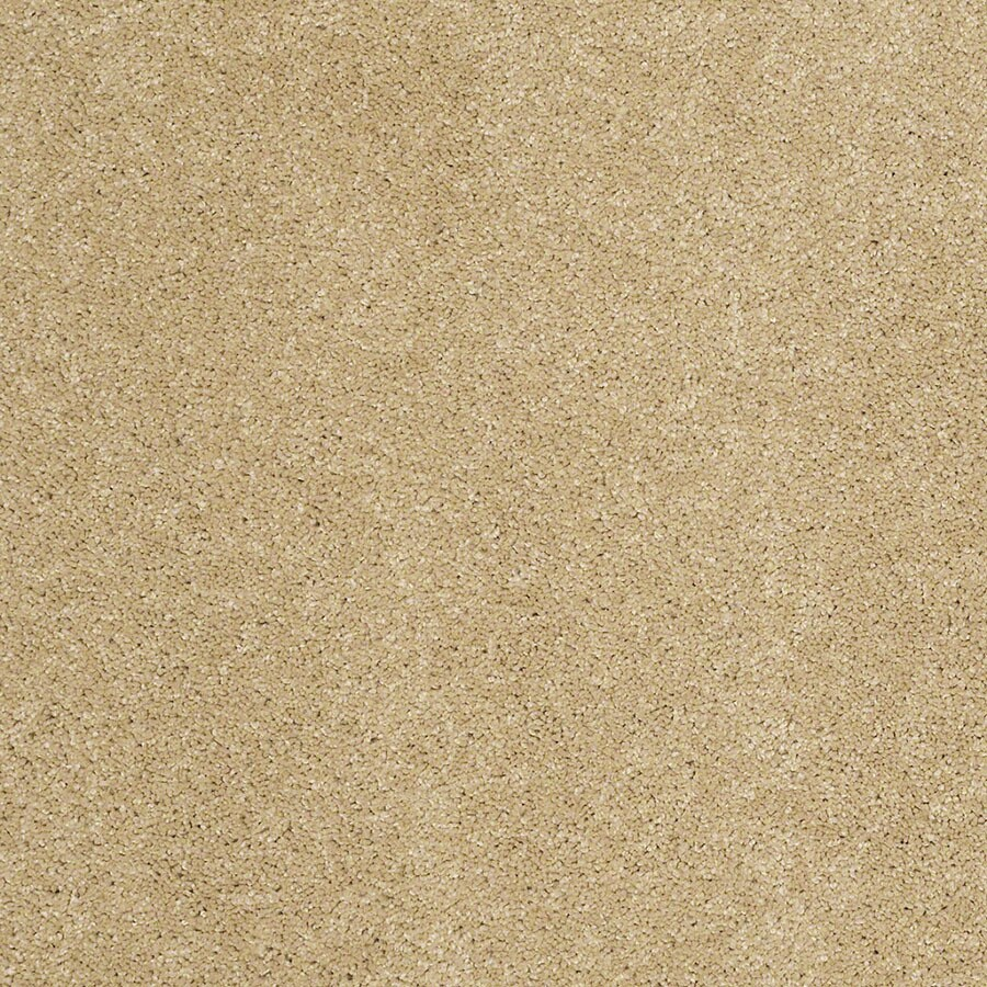 STAINMASTER Luscious IV (S) TruSoft Honey Plus Carpet Sample