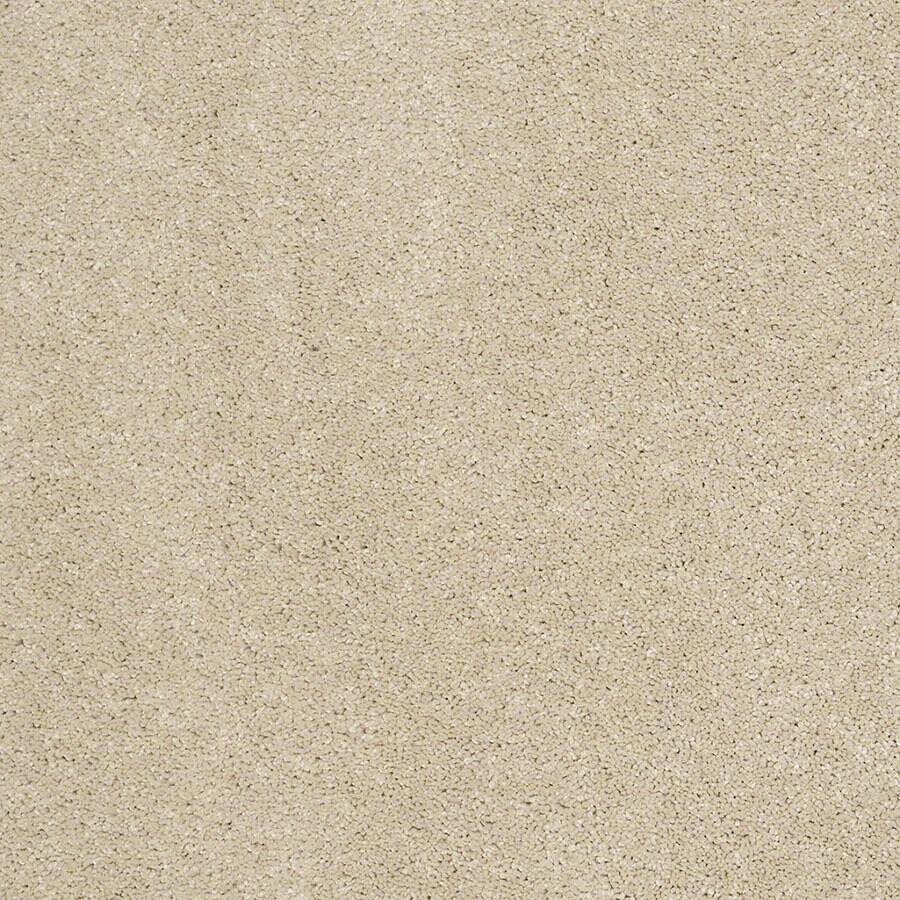 STAINMASTER Luscious IV (S) TruSoft Sandstone Plus Carpet Sample