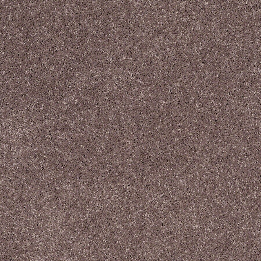 STAINMASTER Luscious IV (S) TruSoft Vintage Lavender Plus Carpet Sample