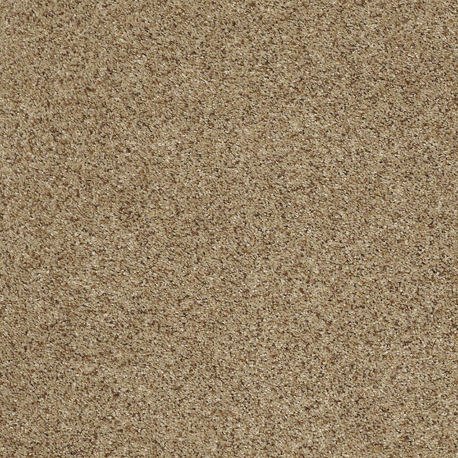 STAINMASTER Luscious IV (T) TruSoft Brownstone Plus Carpet Sample