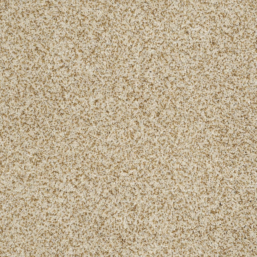 STAINMASTER Private Oasis IV Trusoft Amber Plus Carpet Sample