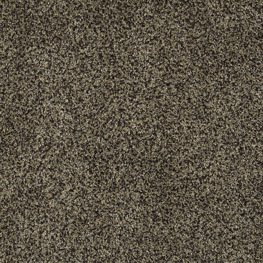 STAINMASTER Private Oasis IV Trusoft Star Beach Plus Carpet Sample
