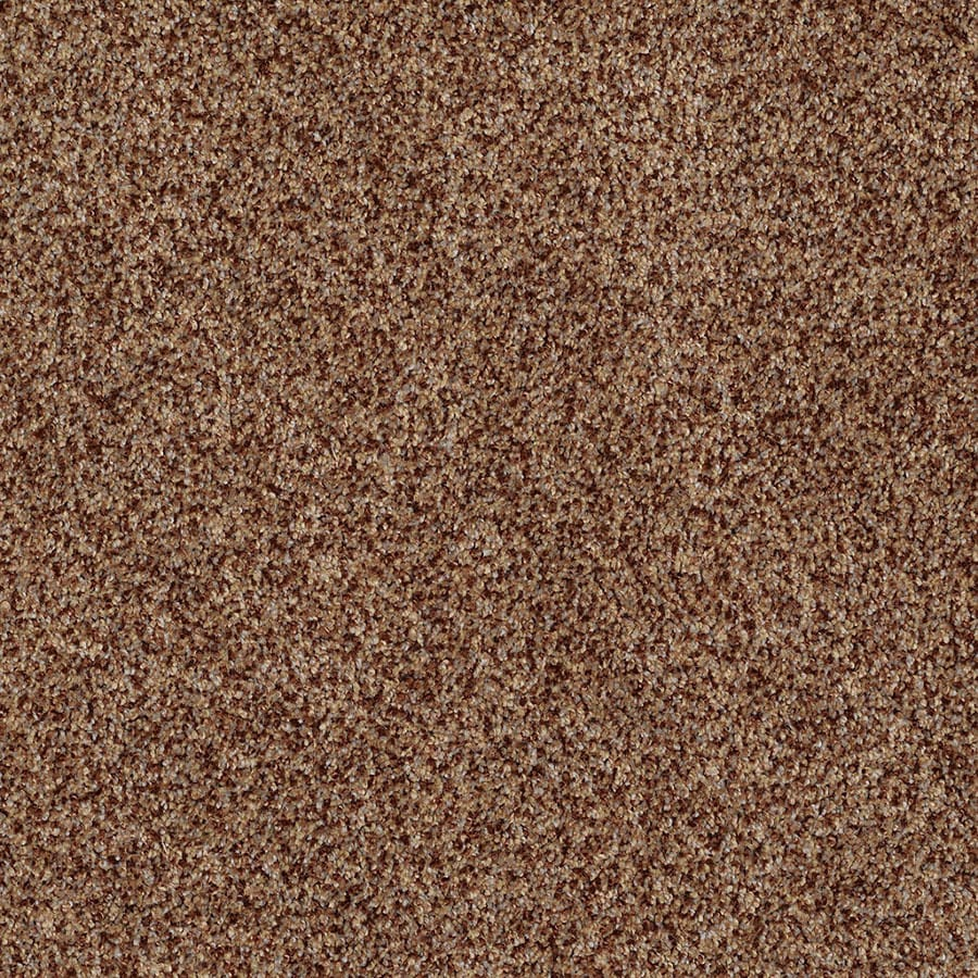 STAINMASTER Private Oasis IV Trusoft Montana Plus Carpet Sample