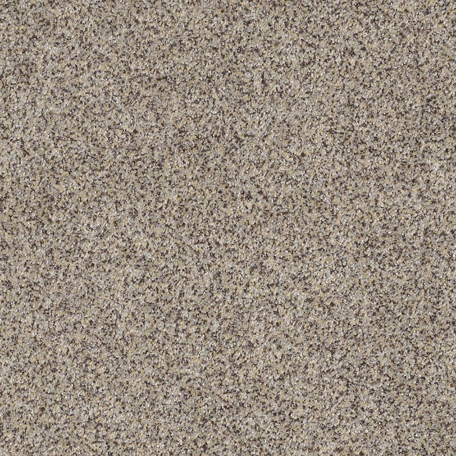 STAINMASTER Private Oasis IV Trusoft Aztec Wave Plus Carpet Sample