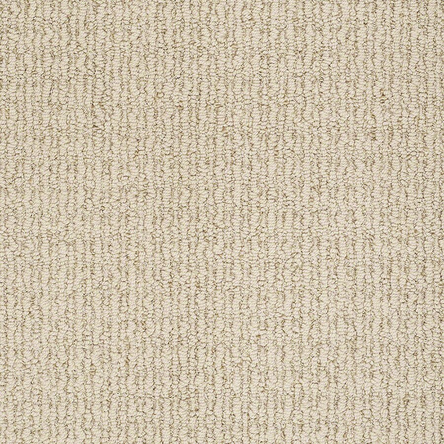 STAINMASTER Uneqivocal Trusoft Oatmeal Berber Carpet Sample