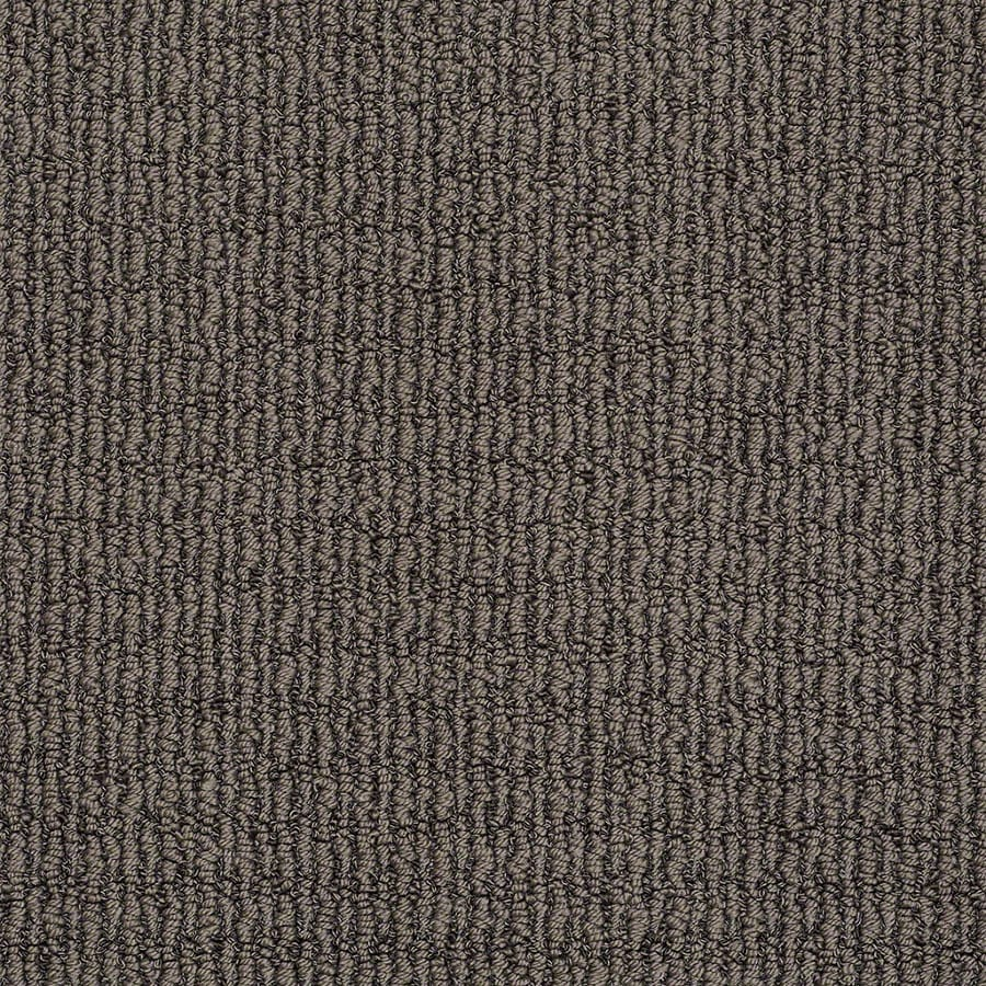 STAINMASTER Uneqivocal Trusoft Graphite Berber Carpet Sample
