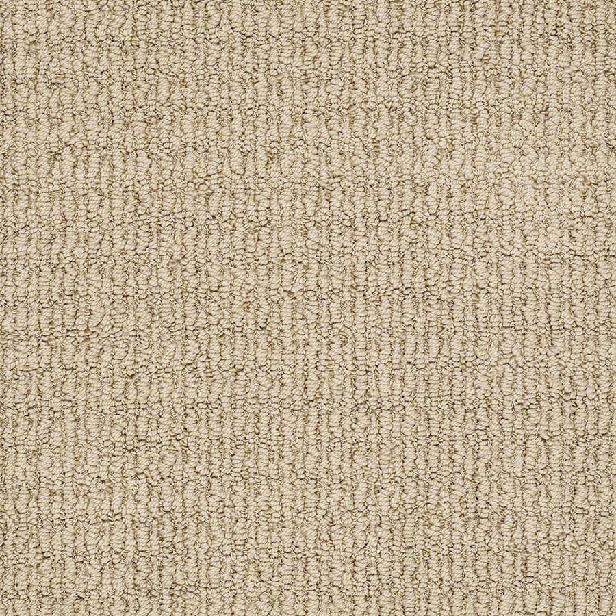 STAINMASTER Uneqivocal Trusoft Canyon Berber Carpet Sample