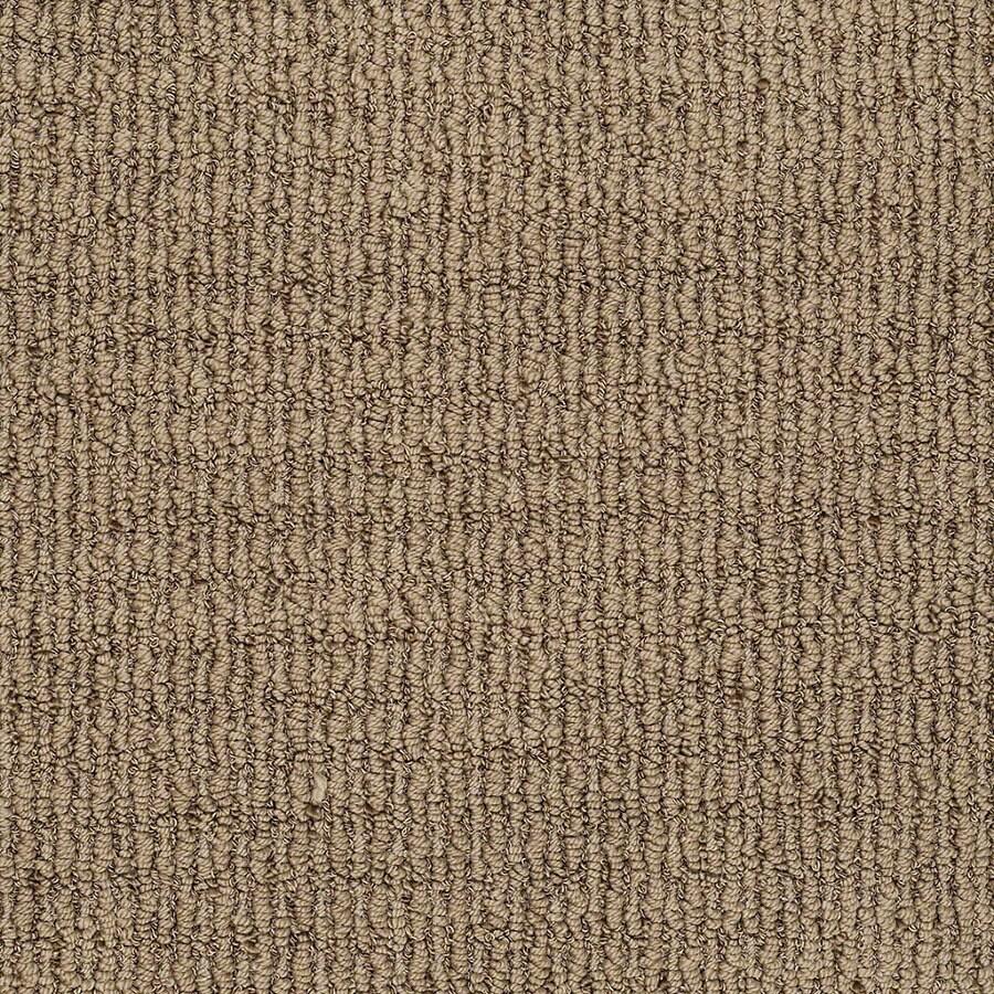STAINMASTER Uneqivocal Trusoft Serene Brown Berber Carpet Sample