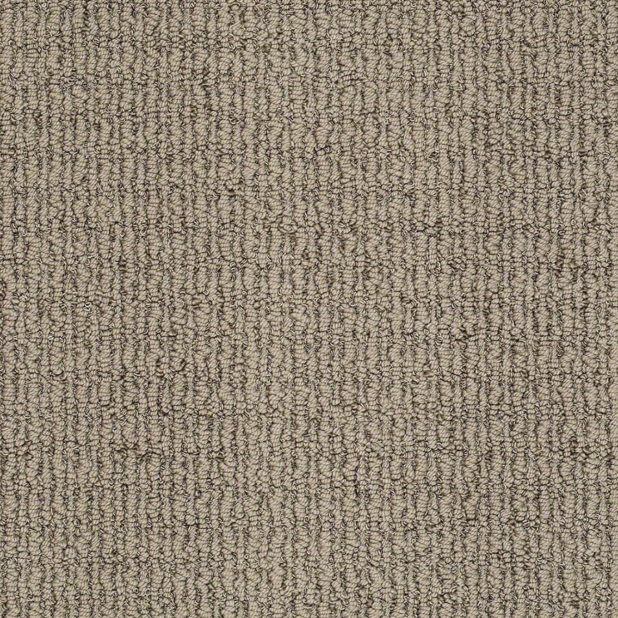 STAINMASTER Uneqivocal Trusoft Shadow Play Berber Carpet Sample