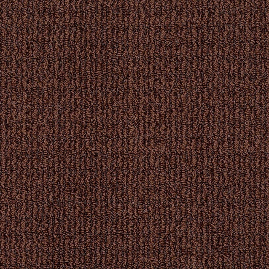 STAINMASTER Uneqivocal Trusoft Fine Wine Berber Carpet Sample