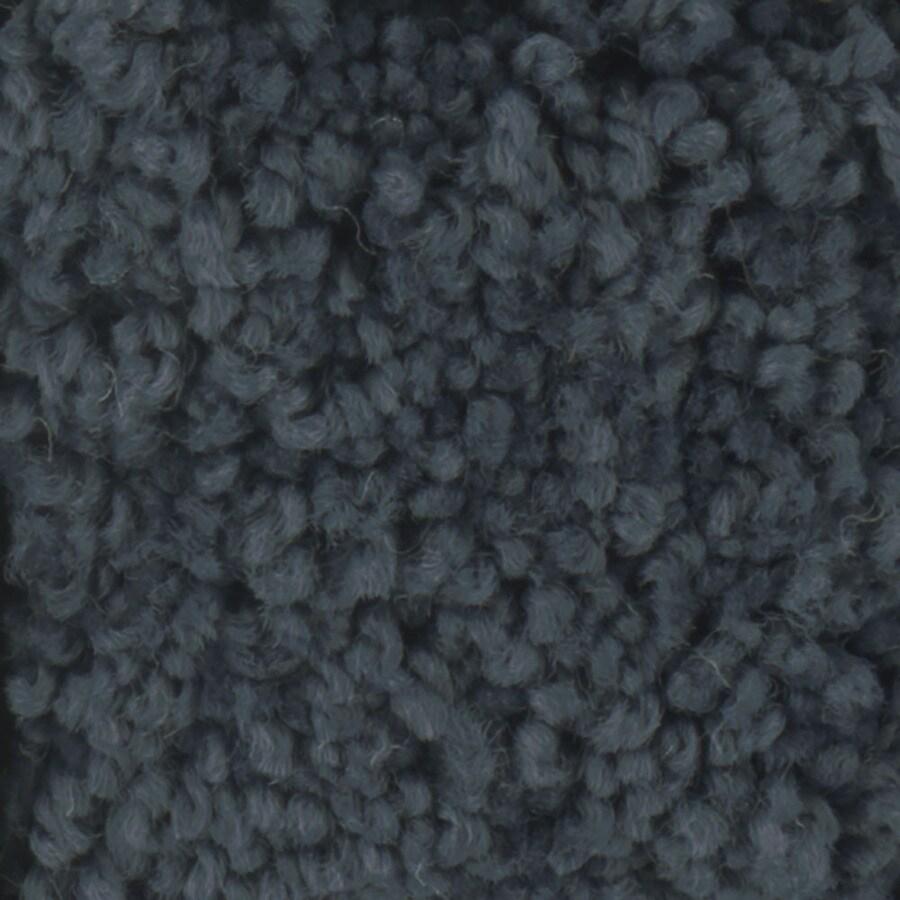STAINMASTER Subtle Beauty Trusoft Ink Spot Plus Carpet Sample