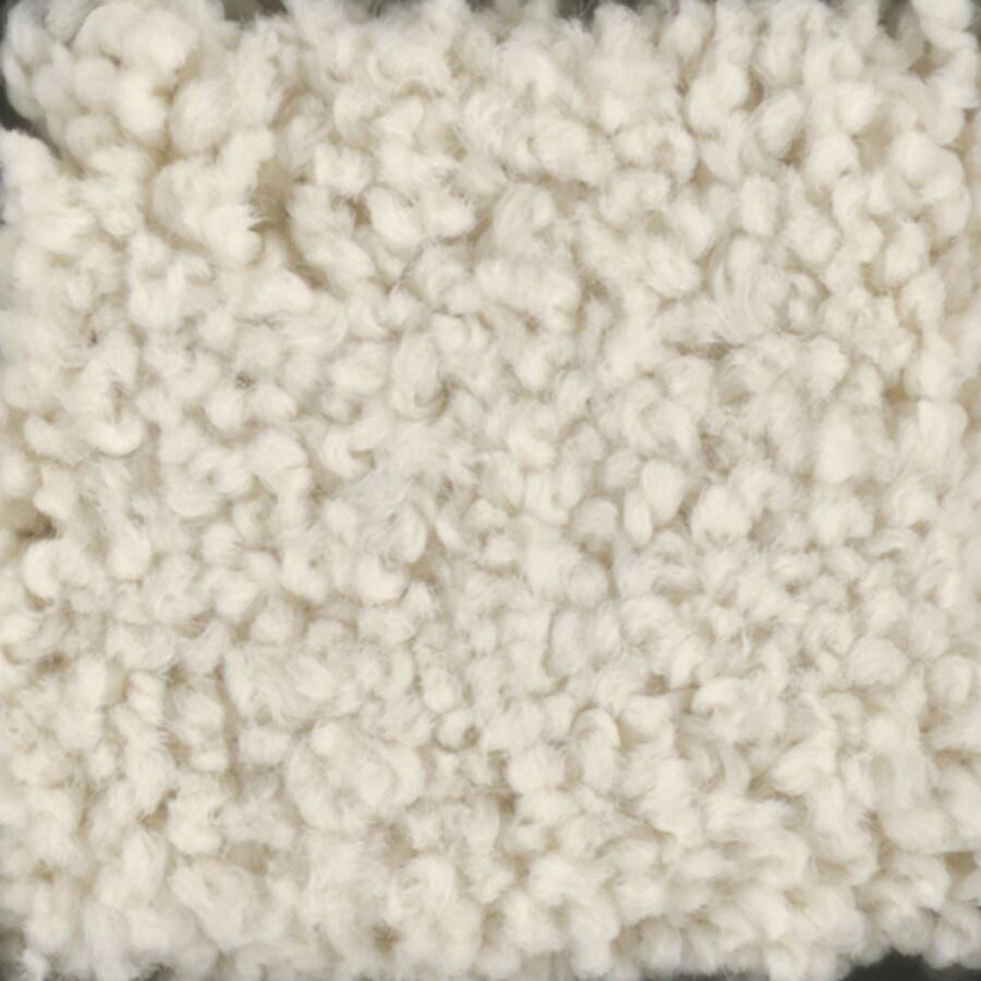 STAINMASTER Subtle Beauty Trusoft Hominy Plus Carpet Sample