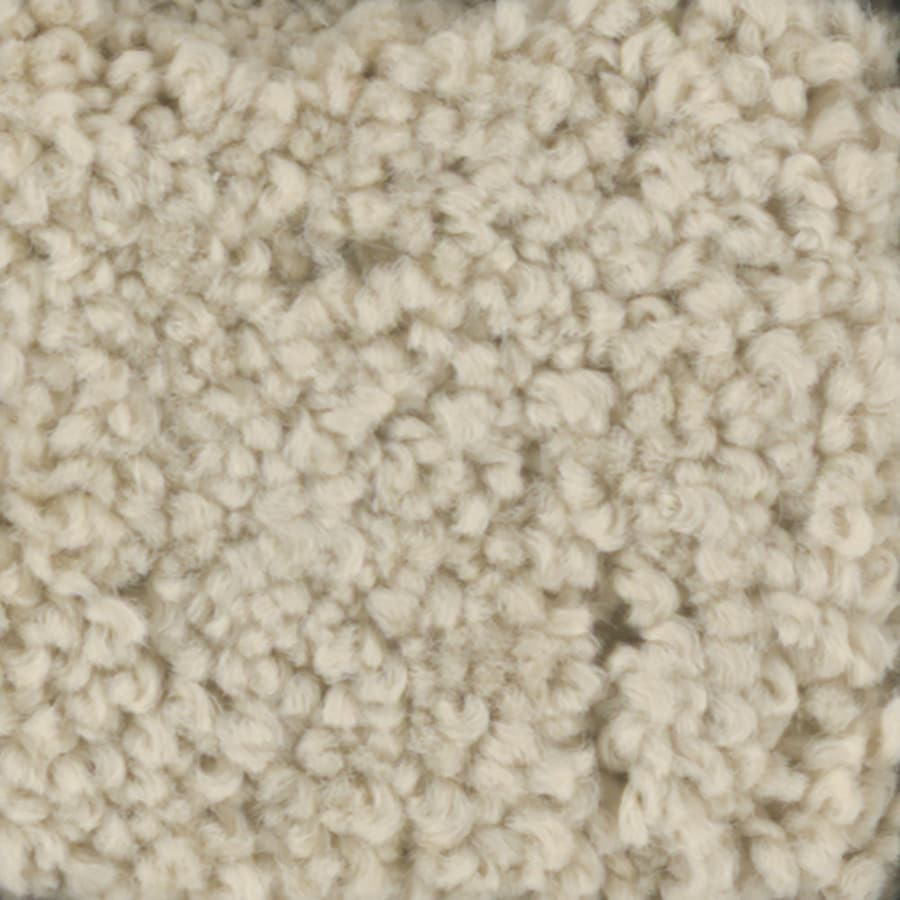 STAINMASTER Subtle Beauty Trusoft Sugar Cookie Plus Carpet Sample