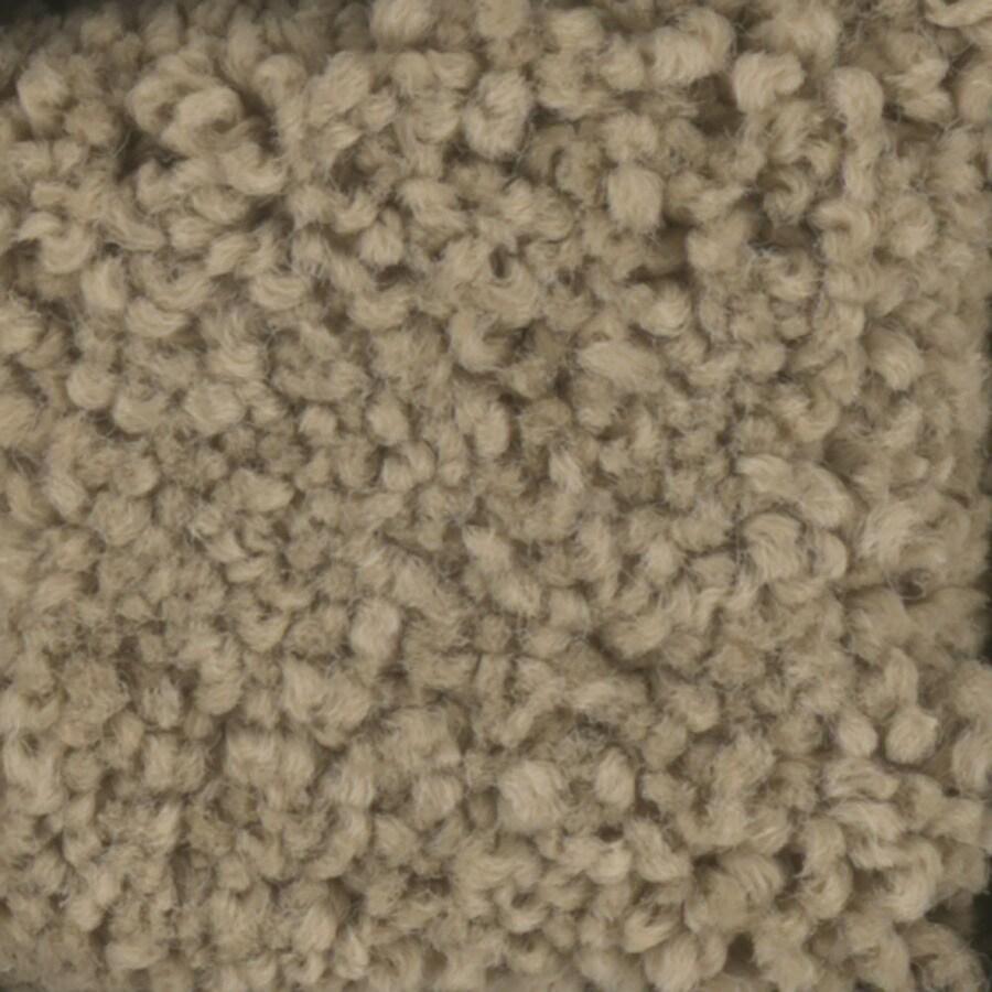 STAINMASTER Subtle Beauty Trusoft Wigwam Plus Carpet Sample