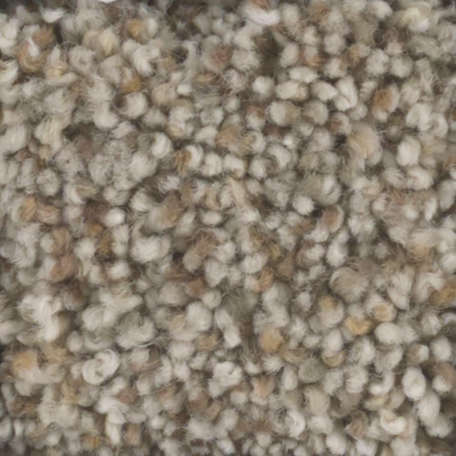 STAINMASTER Pronounced Beauty 2 Trusoft Pebble Plus Carpet Sample