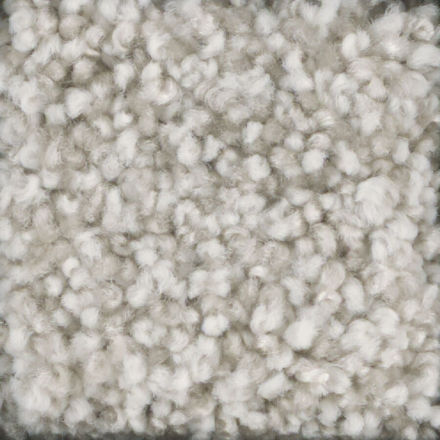 STAINMASTER Dynamic Beauty 2 TruSoft Spider Web Plus Carpet Sample