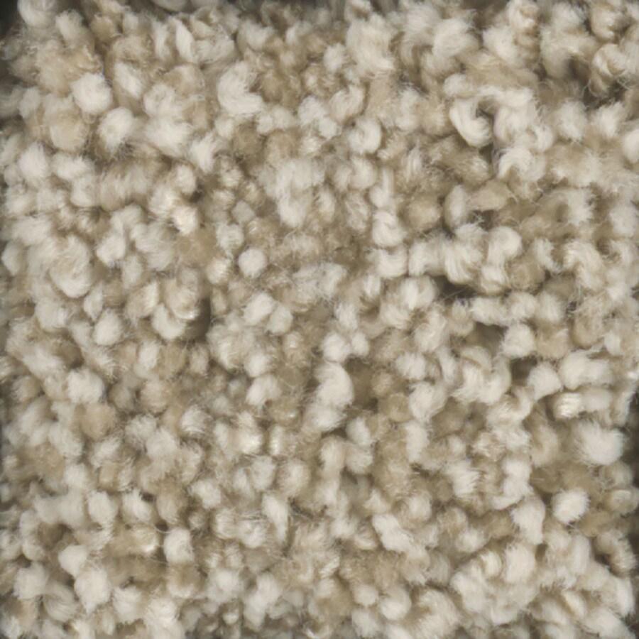 STAINMASTER Dynamic Beauty 2 TruSoft Tee Pee Plus Carpet Sample