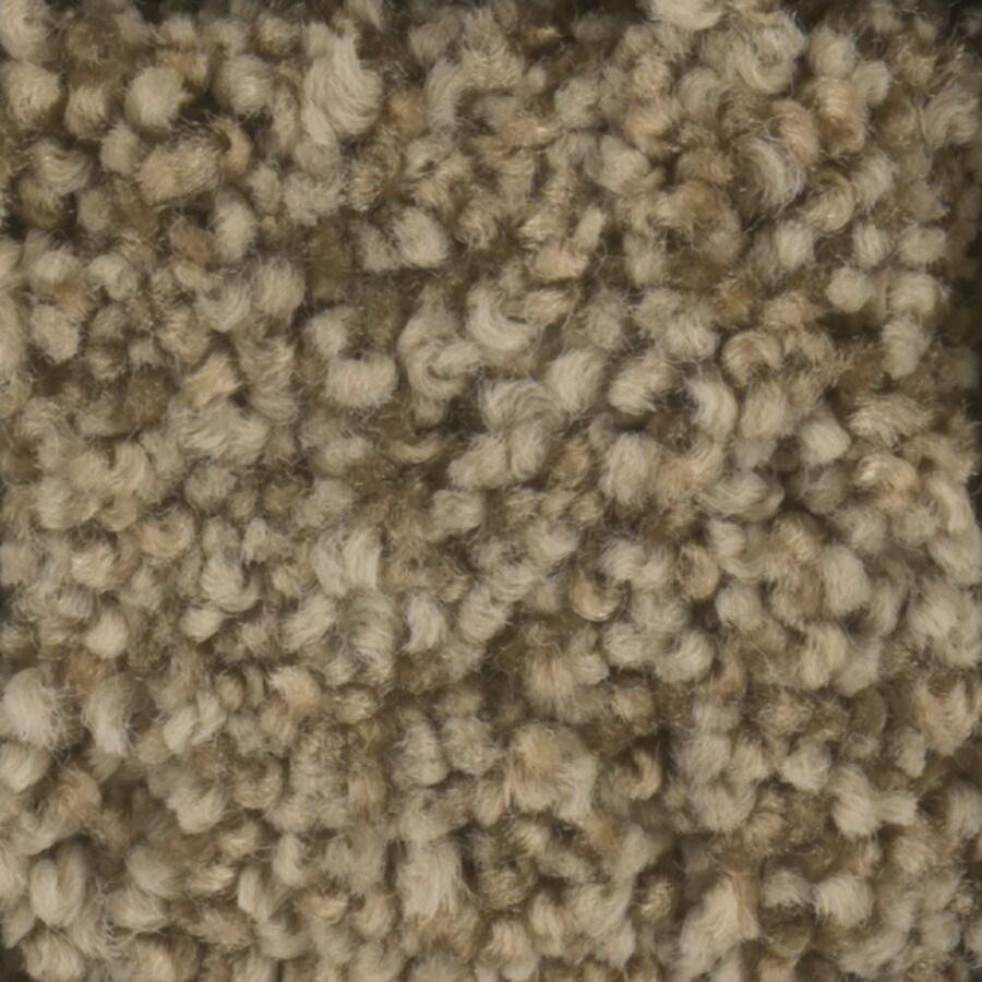 STAINMASTER Dynamic Beauty 2 TruSoft Barn Wood Plus Carpet Sample