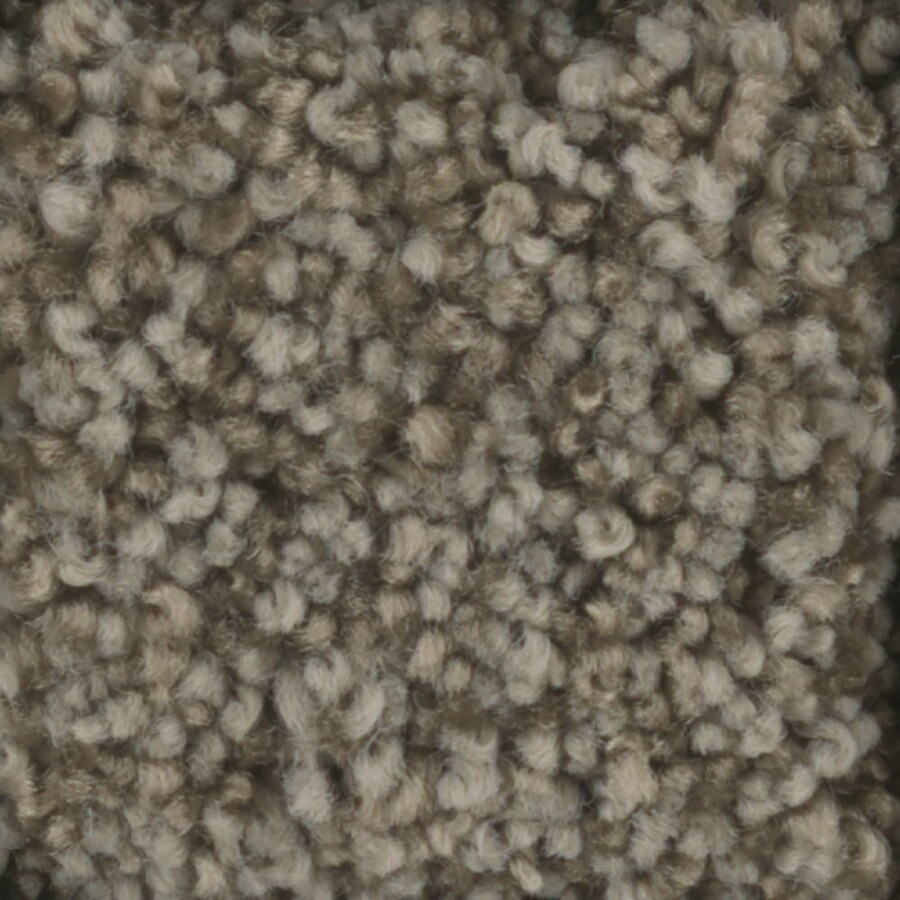 STAINMASTER Dynamic Beauty 2 TruSoft Scarecrow Plus Carpet Sample