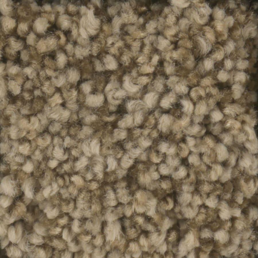 STAINMASTER Dynamic Beauty 3 TruSoft Barn Wood Plus Carpet Sample