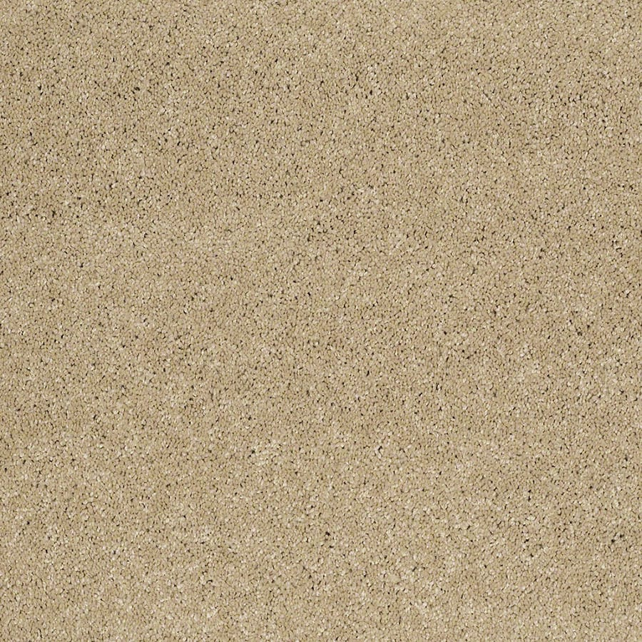 STAINMASTER Classic I (S) TruSoft Canyon Road Plus Carpet Sample