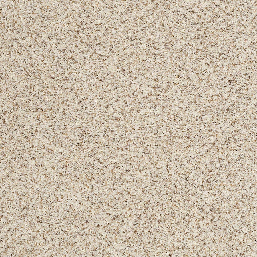 STAINMASTER Classic I (T) TruSoft Smooth Satin Plus Carpet Sample