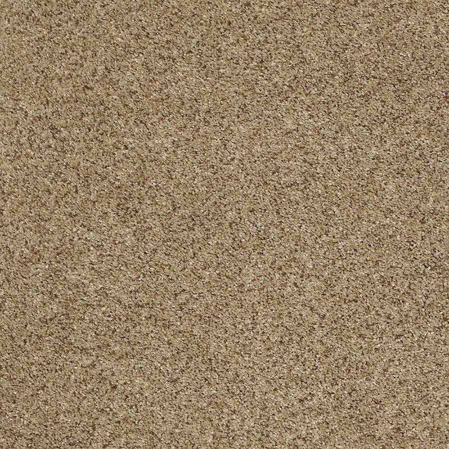STAINMASTER Classic I (T) TruSoft Brownstone Plus Carpet Sample