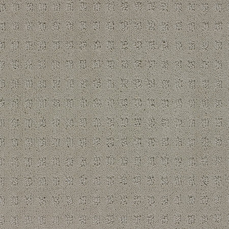 STAINMASTER Glen Willow TruSoft Sugar Cookie Cut and Loop Carpet Sample