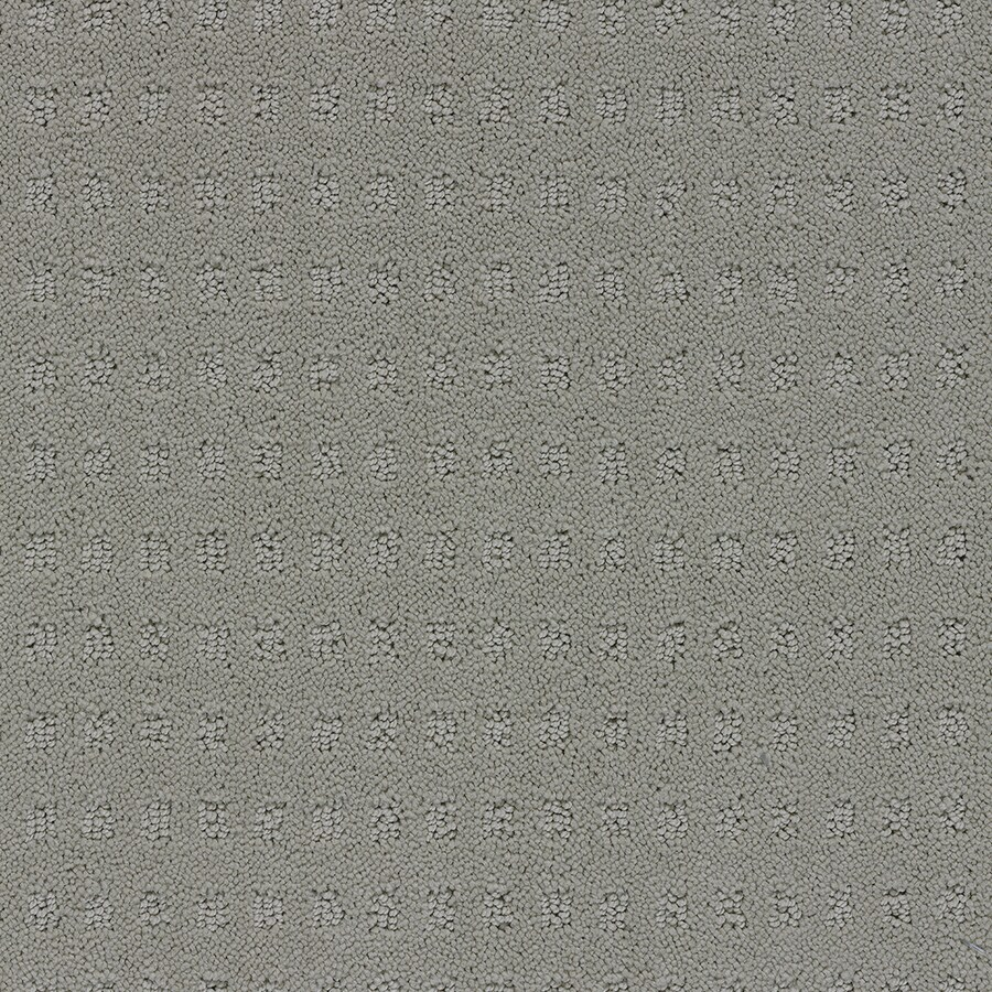 STAINMASTER Glen Willow TruSoft Glaze Cut and Loop Carpet Sample