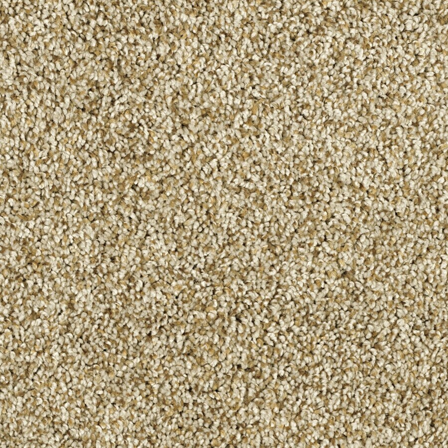 STAINMASTER Soft and Cozy II - T Essentials Dunes Plus Carpet Sample