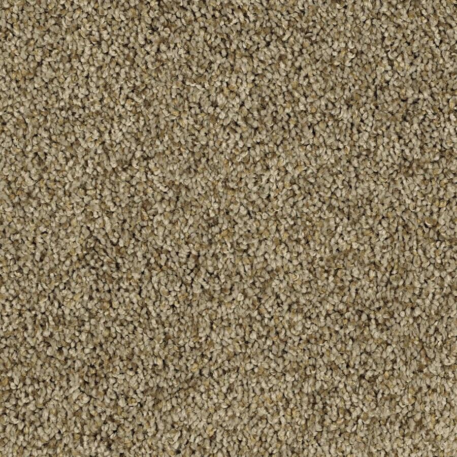 STAINMASTER Soft and Cozy II - T Essentials Ridge Plus Carpet Sample