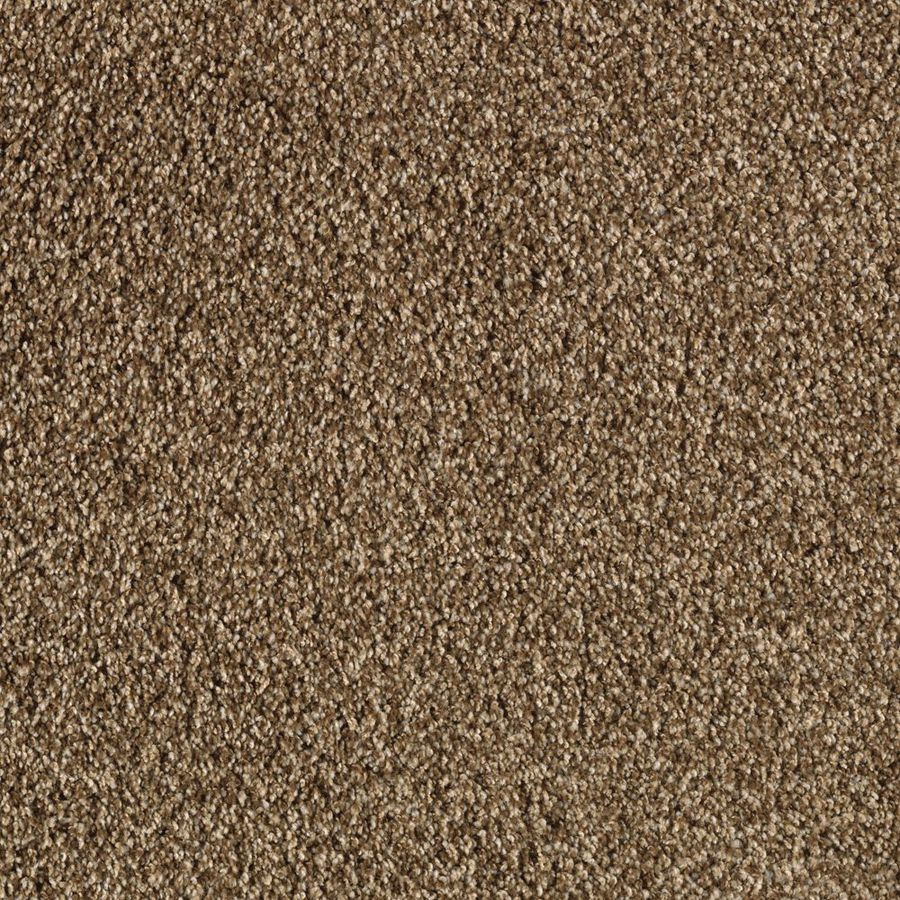 STAINMASTER Seabourne Active Family Coconut Shell Frieze Carpet Sample