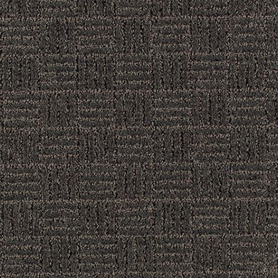 STAINMASTER Stylesboro Essentials Dark Shadows Cut and Loop Carpet Sample