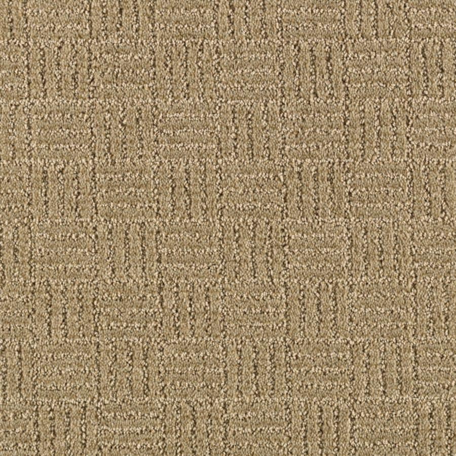 STAINMASTER Stylesboro Essentials Willow Cut and Loop Carpet Sample