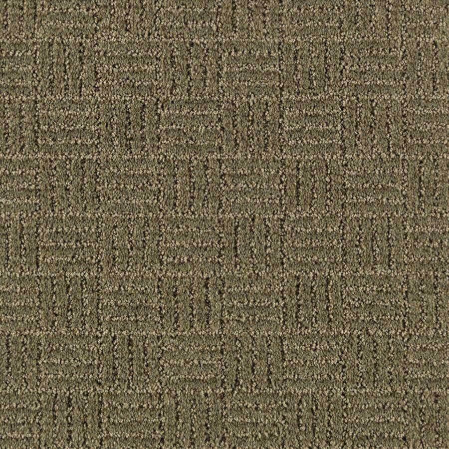 STAINMASTER Stylesboro Essentials Parsley Cut and Loop Carpet Sample