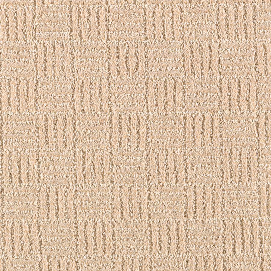 STAINMASTER Stylesboro Essentials Beach Sunset Cut and Loop Carpet Sample