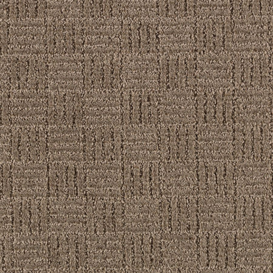 STAINMASTER Stylesboro Essentials Grey Flannel Cut and Loop Carpet Sample