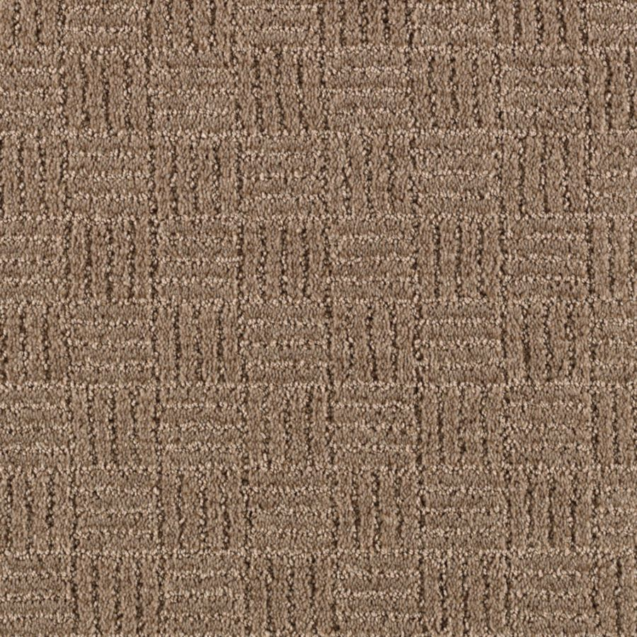 STAINMASTER Stylesboro Essentials Taupe Mist Cut and Loop Carpet Sample