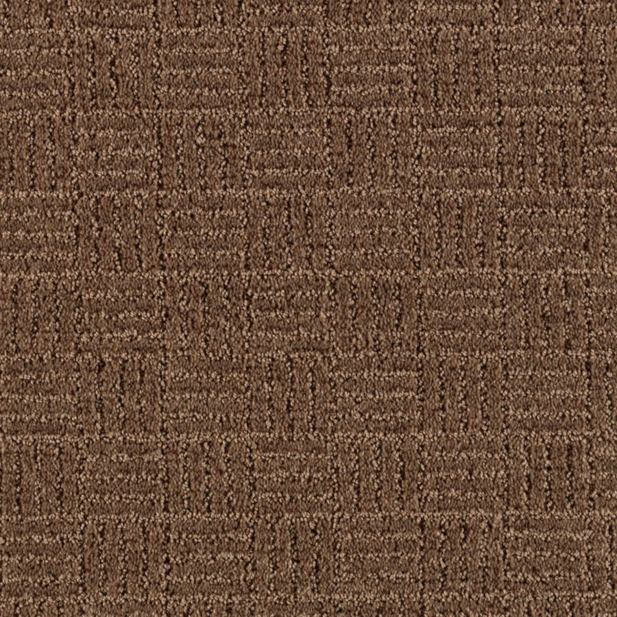 STAINMASTER Stylesboro Essentials Pinecone Cut and Loop Carpet Sample