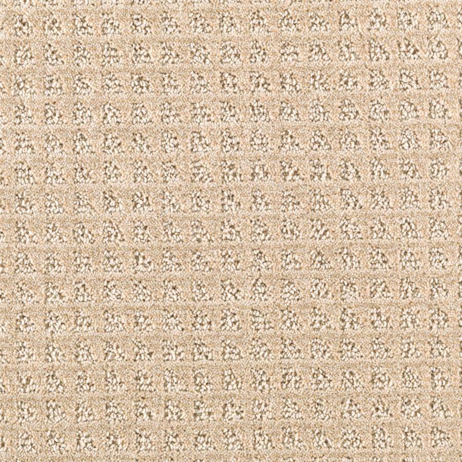 STAINMASTER Designboro Essentials Desert Wind Cut and Loop Carpet Sample