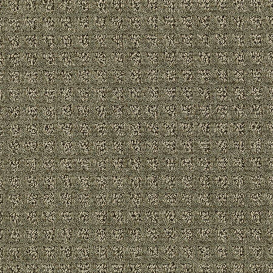 STAINMASTER Designboro Essentials Parsley Cut and Loop Carpet Sample