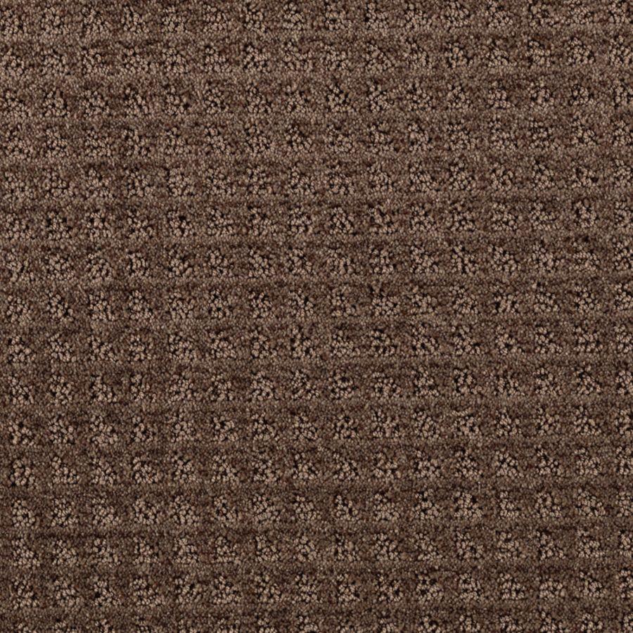 STAINMASTER Designboro Essentials Cigar Leaf Cut and Loop Carpet Sample