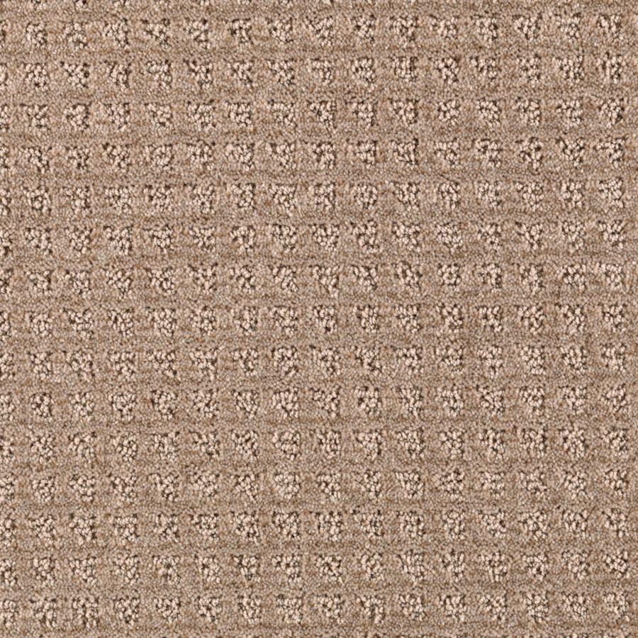 STAINMASTER Designboro Essentials Nougat Cut and Loop Carpet Sample