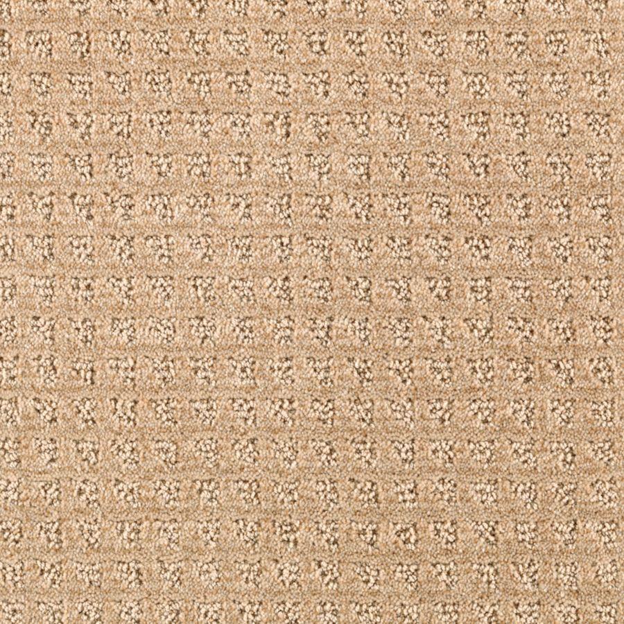 STAINMASTER Designboro Essentials Almond Butter Cut and Loop Carpet Sample