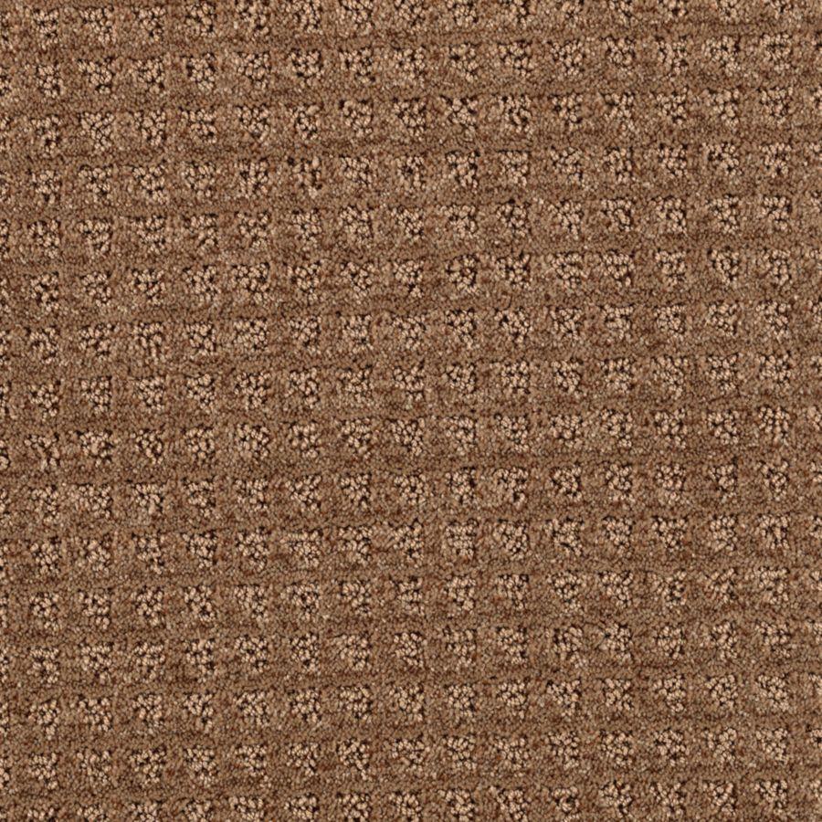 STAINMASTER Designboro Essentials Mocha Cut and Loop Carpet Sample