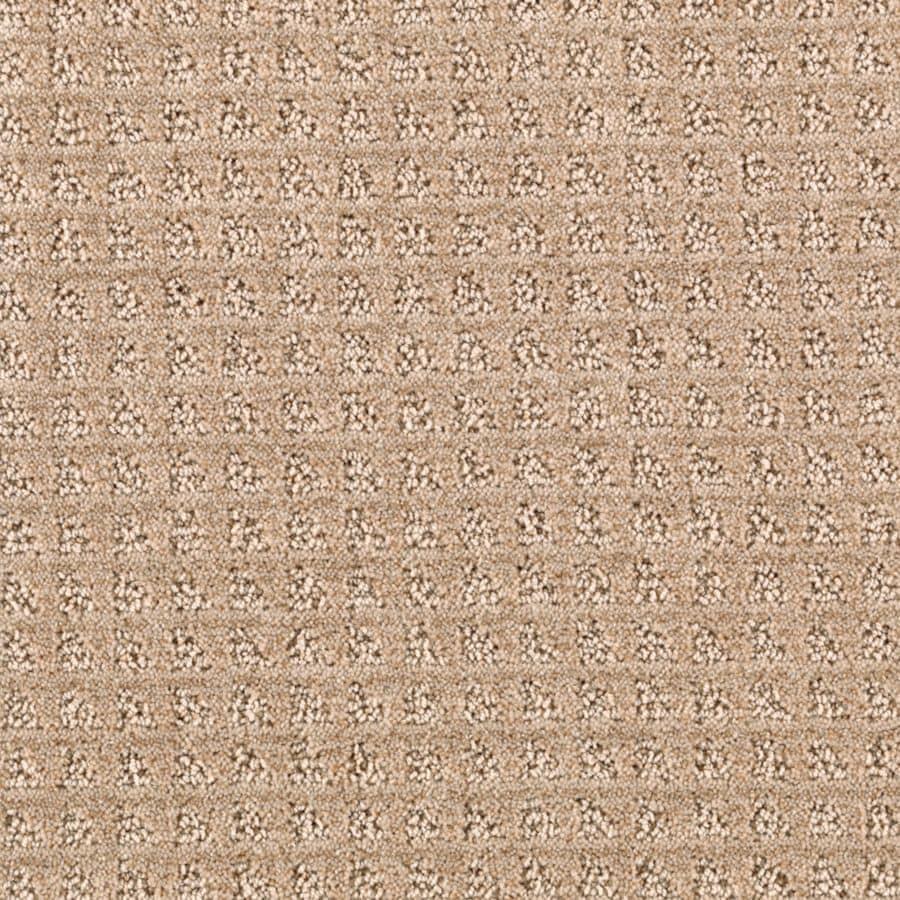 STAINMASTER Designboro Essentials Mesa Tan Cut and Loop Carpet Sample