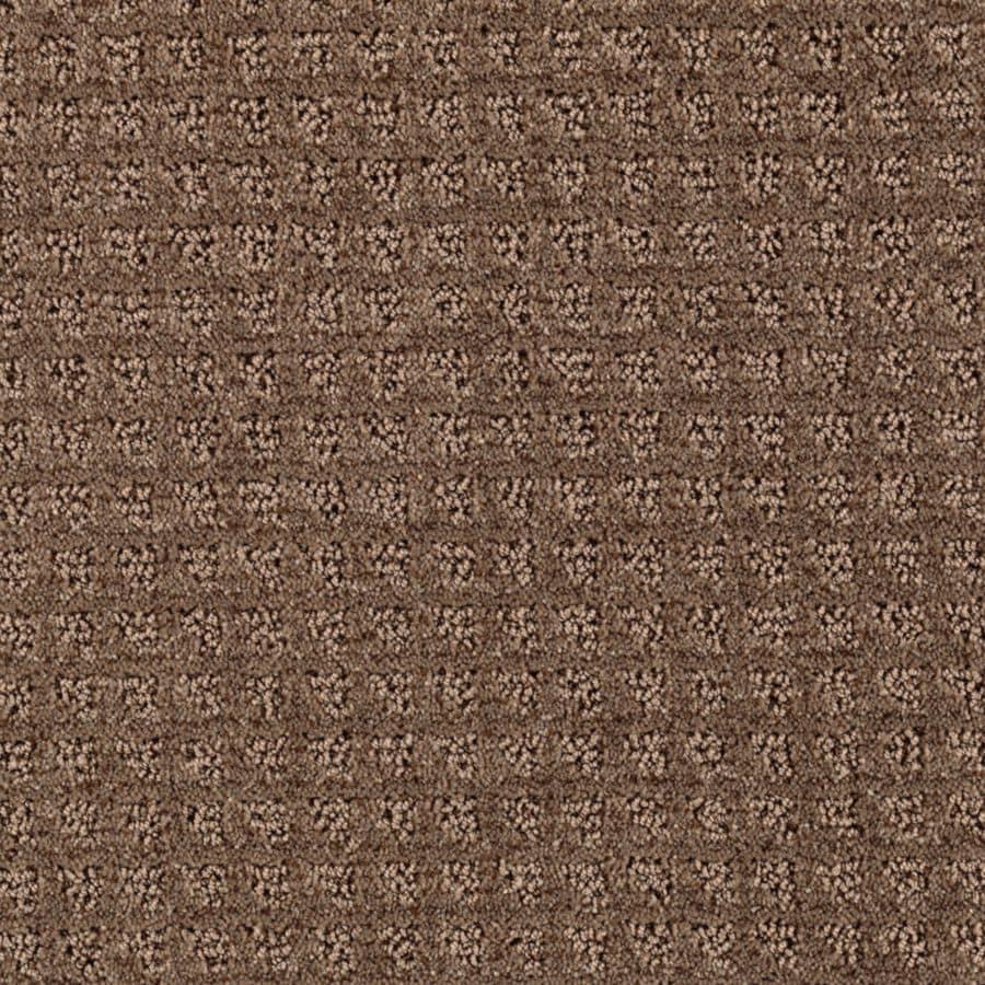 STAINMASTER Designboro Essentials Pinecone Cut and Loop Carpet Sample