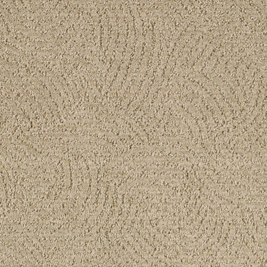 STAINMASTER Fashionboro Essentials Essence Cut and Loop Carpet Sample